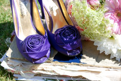 Purpleroseshoe
