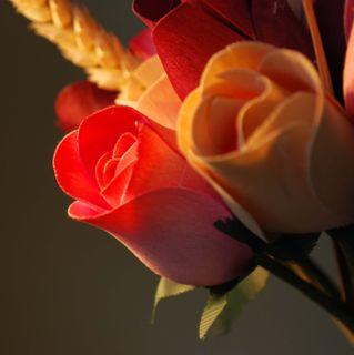 Wood roses light