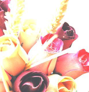 Wood rose bright